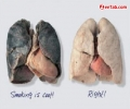 Anti Smoking Picture