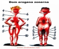 The Erogen Zone