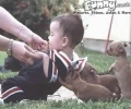 Puppy Helps Kid