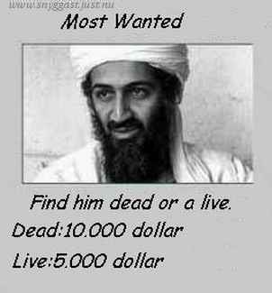 Osama Is Most Wanted