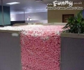 Office Prank