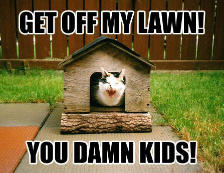 Cat With Lawn