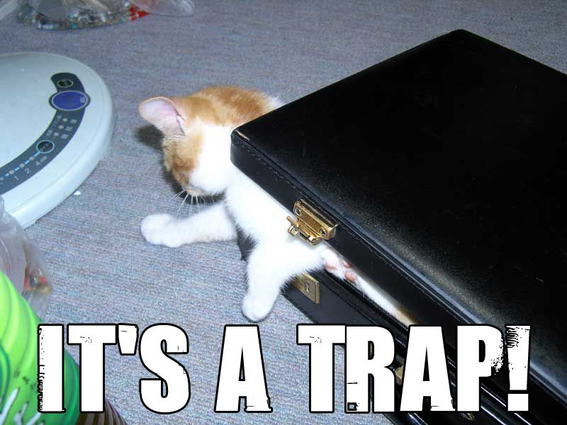 Laptop Trap For Cats