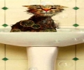 Cat On Sink
