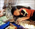 Dont Sleep With The Crocodile