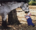 Kid Kissing A Horse
