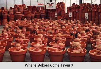 Where Babies Come From ?