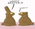 Chocolate Bunny Rabbits