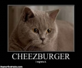 Cheezburger Locats