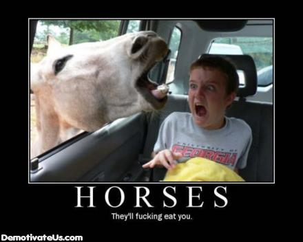 Horses Eat People