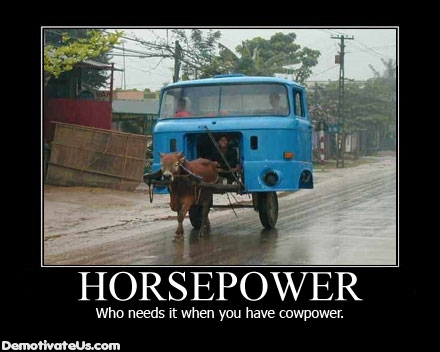 Horsepower Who Needs It When You Have  Cowpower