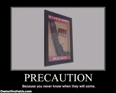 Precaution Zombies 12 Gaugeal