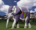 Milka Or Windows Elephant
