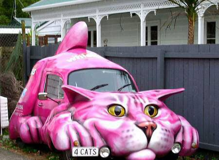 Pink Cat Car   Funny Cars