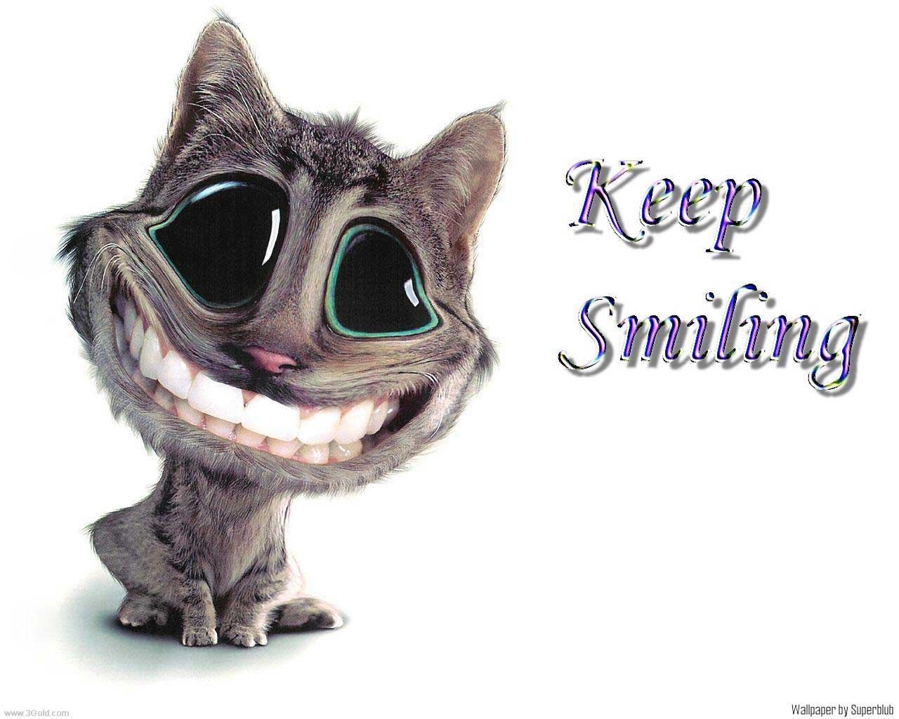 Funny pictures funny 3d pictures funny desktop wallpapers keep smiling